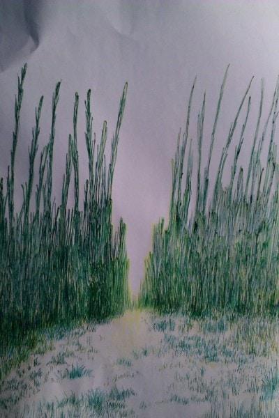 Bound by Grass